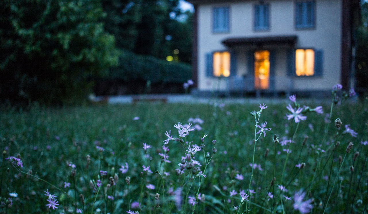 3 Ways to Use Your Yard to Love Your Neighbors